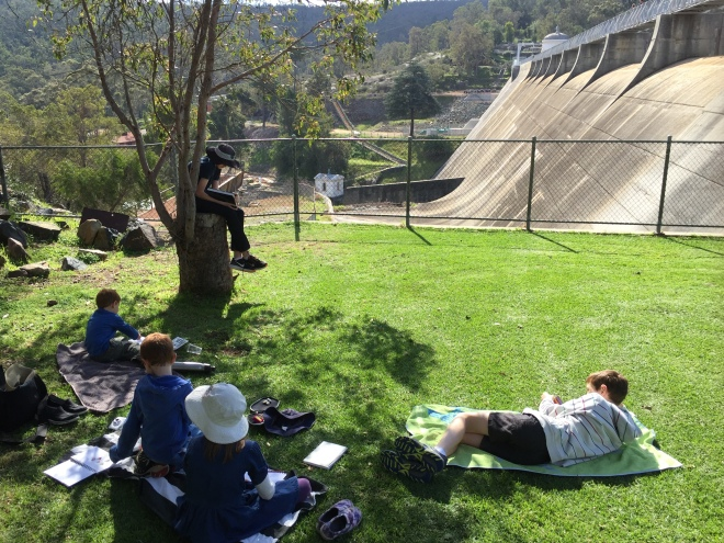 Mundaring Weir nature journalling