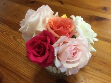 roses May 2016
