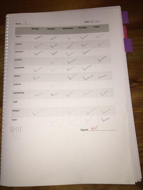 Planner Weekly Checklist